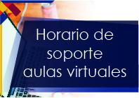 Soporte aulas virtuales